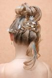 Hairstyle. Of young pretty lady Royalty Free Stock Photo