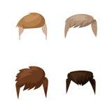 Hairstyle beard and hair face cut mask flat cartoon vector. royalty free illustration