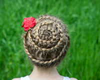 Hairstyle with braids on a young girl Royalty Free Stock Image