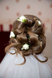 Hairstyle bride Stock Photo