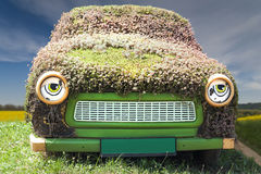 Hairstyle. Funny picture with an old car covered with simple flowers Stock Photography