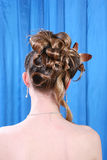 Hairstyle glamour Stock Images