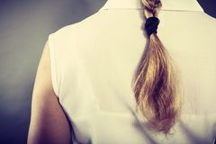 Back view of woman with blonde braid. Hairstyle and hairdo concept. Back view of blonde woman with long elegant braid. Girl with beautiful coiffure Royalty Free Stock Photo
