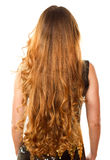 Hairstyle from long curly hair from the back. On an isolated white background royalty free stock photos