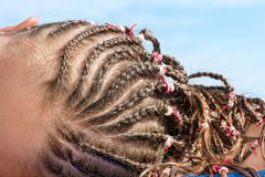 Hairstyle with many small plaited braids. Summertime outdoors cl. Ose-up image royalty free stock images