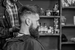 Hairstyle service concept. Hipster bearded client got hairstyle. Barber with clipper works on hairstyle for bearded man. Barbershop background. Barber with royalty free stock photo