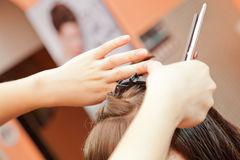 hairstyles Imagem de Stock Royalty Free