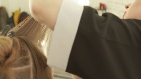 Hairstylist combing female hair and cutting with hairdressing scissors in beauty salon. Close up hairdresser making stock video footage