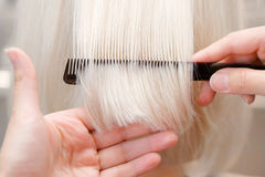 Hairstylist combing hair. Hairdresser combing blonde hair at hair saloon Royalty Free Stock Image