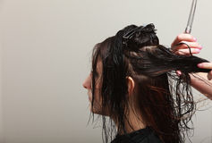 Hairstylist combing hair woman client in hairdressing beauty salon Royalty Free Stock Photography