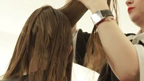 Hairstylist combing strand hair before cutting in hairdressing salon. Close up hairdresser making female haircut in stock footage