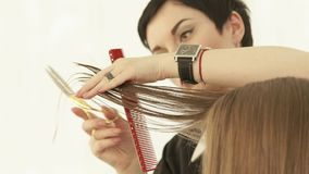 Hairstylist cutting female hair with scissors in hairdressing salon. Close up hairdresser making female haircut with stock video