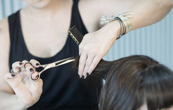 Hairstylist cutting hair of female customer Royalty Free Stock Photo