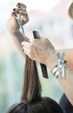 Hairstylist cutting hair of female customer Stock Photography