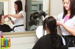 Hairstylist cutting hair of woman client in salon royalty free stock images