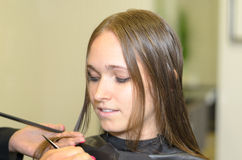 Hairstylist Cutting the Hair of a Young Woman Royalty Free Stock Photography