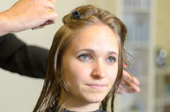 Hairstylist Cutting the Hair of a Young Woman Royalty Free Stock Photo