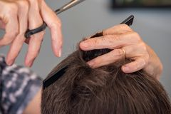 Hairdressing Stock Photography