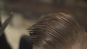 Hairstylist cutting wet male hair in with barber scissors in hairdressing salon. Hairdressing doing boy haircut with stock footage