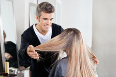 Hairstylist Examining Client's Hair At Salon Royalty Free Stock Photos