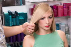 Hairstylist makes hairstyle for beautiful girl Royalty Free Stock Photography