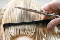 Hairstylist que penteia o cabelo Fotografia de Stock Royalty Free