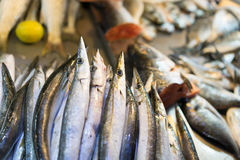 Hairtail fish. In the seafood market sale Royalty Free Stock Photography