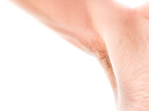 Hairy armpit. Hairy male armpit isolated on white with copy space to the left Stock Photo