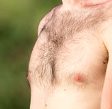 Hairy chest of a man in the open air Royalty Free Stock Photos
