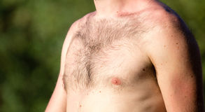 Hairy chest of a man in the open air Royalty Free Stock Photography