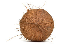 Hairy Coconut Stock Image