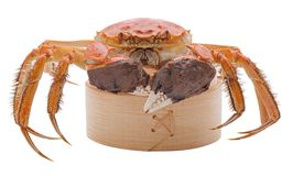 Hairy crabs on the Bamboo steamer Isolated in Stock Photos