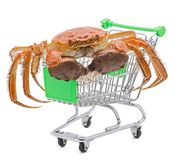 Hairy crabs on the shopping cart isolated in white Royalty Free Stock Photos