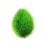 Hairy egg Royalty Free Stock Images