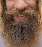 Hairy Face of a Man royalty free stock image