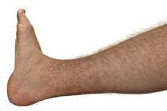 Hairy leg Stock Photography