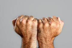 Hairy man fist closeup expression over gray. Hairy man fisht closeup expression over gray background Royalty Free Stock Photography