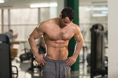 Hairy Man Showing Abdominal Muscle. Portrait Of A Young Physically Fit Hairy Man Showing His Well Trained Body - Muscular Athletic Bodybuilder Fitness Model royalty free stock image
