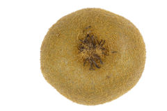 Hairy skin of kiwi closeup Royalty Free Stock Images