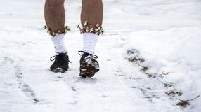 Hairy unshaven legs in black shoes and white socks with flowers go through the snow Royalty Free Stock Image
