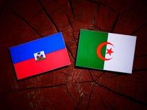 Haiti flag with Algerian flag on a tree stump isolated. Haiti flag with Algerian flag on a tree stump stock photography