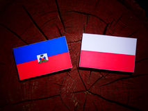 Haiti flag with Polish flag on a tree stump isolated. Haiti flag with Polish flag on a tree stump vector illustration