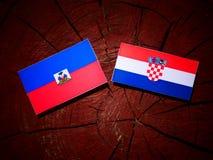 Haiti flagga med den kroatiska flaggan på en trädstubbe Royaltyfria Bilder