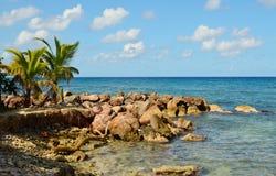 Haitian Rocky Shore Fotos de Stock Royalty Free