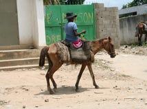Haitier taxi Royaltyfria Foton