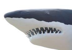 Haj från betong Fotografering för Bildbyråer