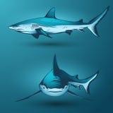 hajar Stock Illustrationer