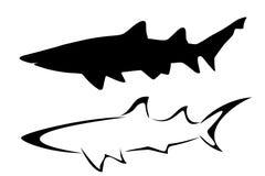 hajar Arkivbilder