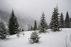 Hajla, Черногория Стоковое Фото