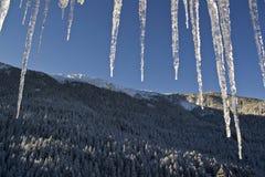 Hajla, Montenegro Fotografia Stock